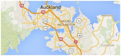 Landscaping services auckland landscape company north shore for Auckland landscaping companies